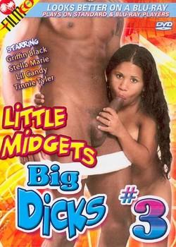 Little Midgets Big Dicks #3